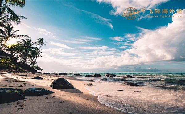蓝蓝的天空下海边的沙滩和树