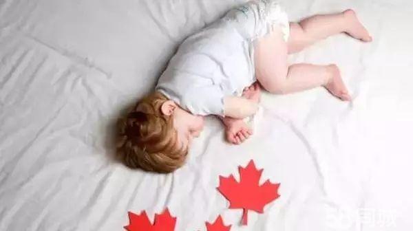 加拿大移民易受哪些骗局?加拿大移民必看!